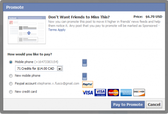 Facebook - Personal promoted posts - payment