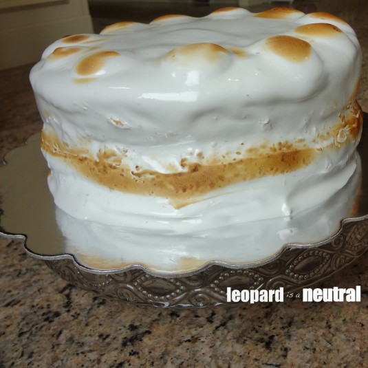 Smitten Kitchen s'more layer cake - Leopard is a Neutral - finished product