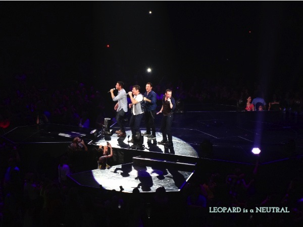 98 Degrees Toronto Concert - Leopard is a Neutral - boybands