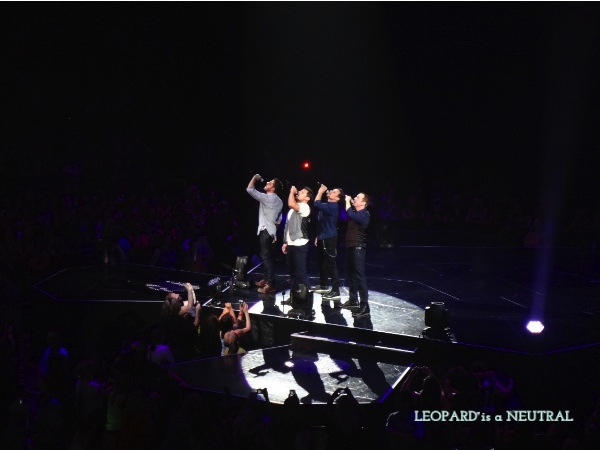 98 Degrees Toronto Concert Leopard is a Neutral