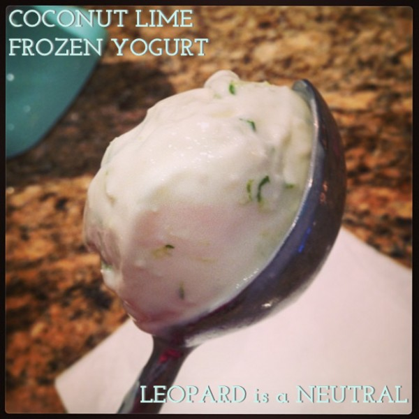 Coconut Lime Frozen Yogurt - Leopard is a Neutral - KitchenAId Ice Cream Attachment