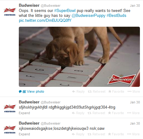 Budweiser SuperBowl Drunk Puppy Tweets