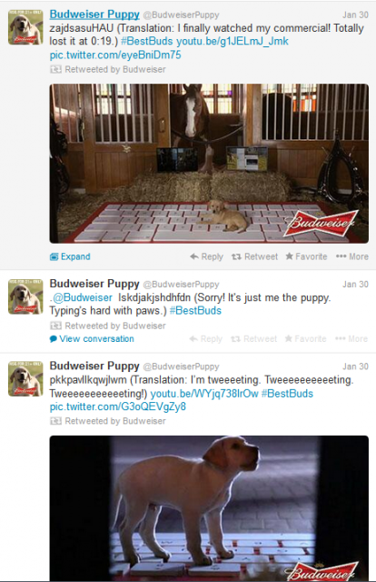 Budweiser SuperBowl Puppy Twitter account