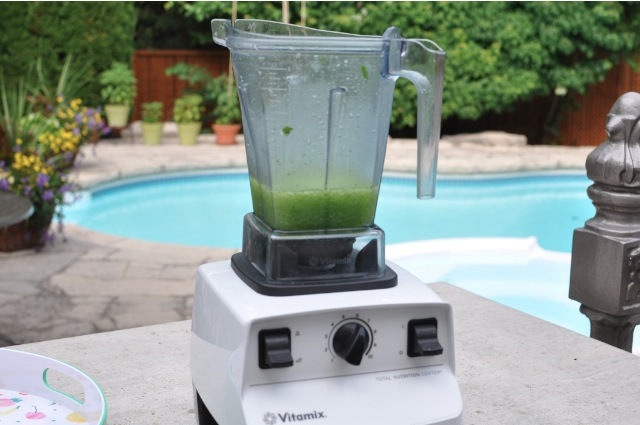 Vitamix by the pool