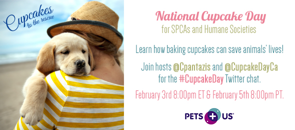 Support SPCA National Cupcake Day 2015