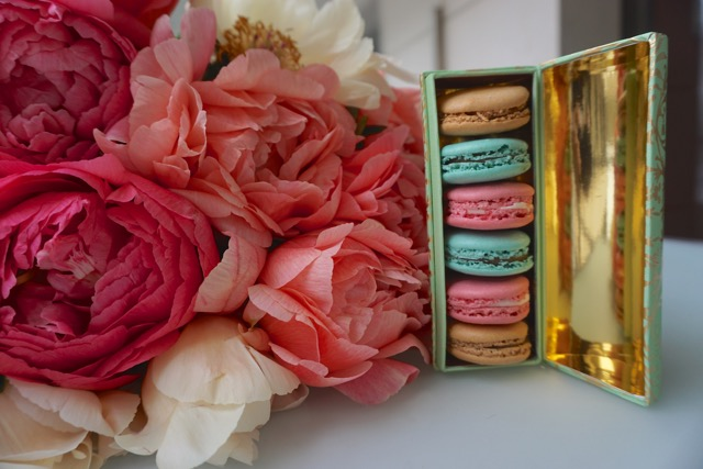 peonies & Macarons in Nice - Stephanie Fusco